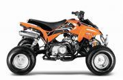 125cc Grizzly Quad