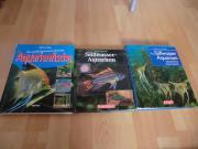 3 Stück Aquarium