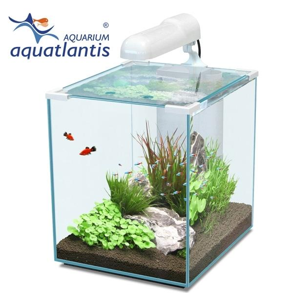 40 liter nano cube aquarium komplettset neu in karlsruhe fische aquaristik kaufen und. Black Bedroom Furniture Sets. Home Design Ideas