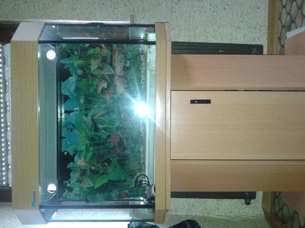 6eckiges aquarium von mp aquarien mit beleuchtung und unterschrank in m hlacker fische. Black Bedroom Furniture Sets. Home Design Ideas