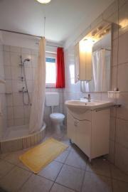 Apartment in Novigrad (