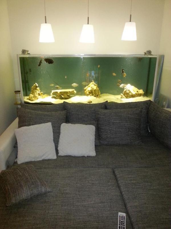 aquarium 1000 liter in potsdam fische aquaristik kaufen und verkaufen ber private kleinanzeigen. Black Bedroom Furniture Sets. Home Design Ideas