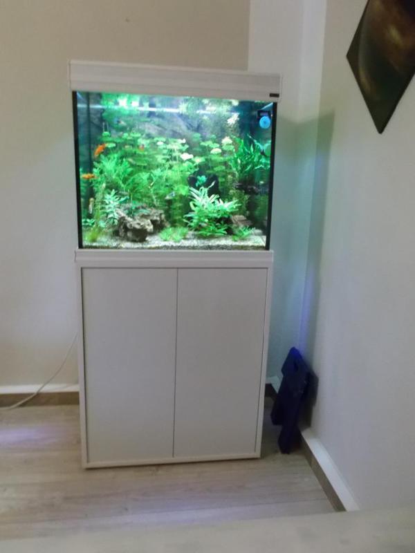 aquarium led kaufen gebraucht und g nstig. Black Bedroom Furniture Sets. Home Design Ideas