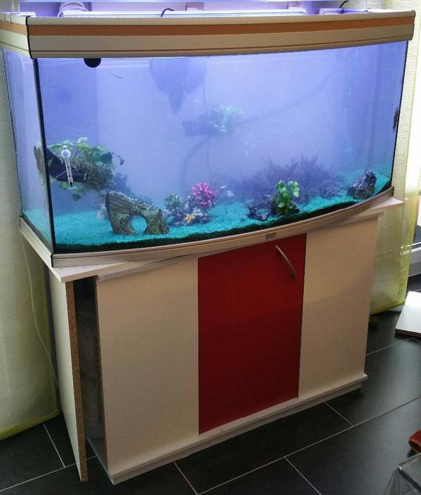 aquarium 240l komplett mit unterschrank eheim. Black Bedroom Furniture Sets. Home Design Ideas