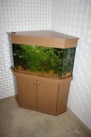Aquarium, kpl.