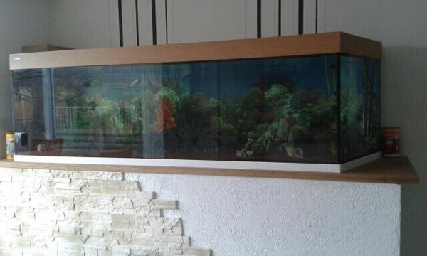 aquarium mit unterschrank und pumpe in emsdetten fische. Black Bedroom Furniture Sets. Home Design Ideas