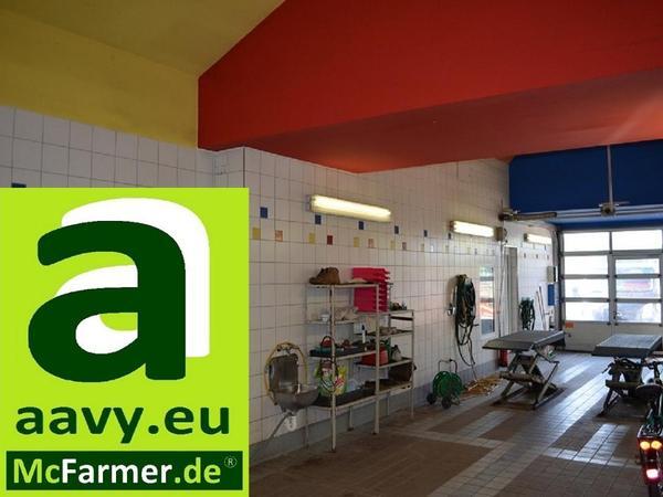 autohaus werkstatt b ros am s bhf k nigs wusterhausen bei berlin mieten vermietung. Black Bedroom Furniture Sets. Home Design Ideas