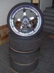 Barracuda Velvet 19