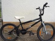 BMX Rad FELT