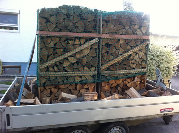 brennholz buche 33 cm 90 eur ster und 25 cm 95 eur ster lieferung frei haus in freising alles. Black Bedroom Furniture Sets. Home Design Ideas