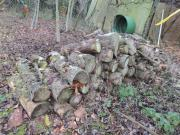Brennholz Fichte/Tanne
