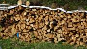 Brennholz Holz Fichte