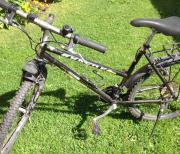 Damen M -Bike