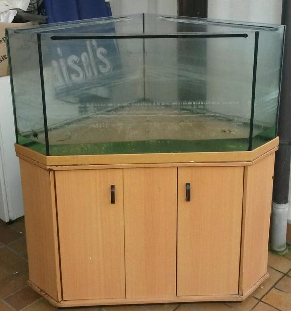 eck aquarium 280 liter in k ngen fische aquaristik kaufen und verkaufen ber private. Black Bedroom Furniture Sets. Home Design Ideas