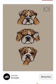 Englisch Bulldogg