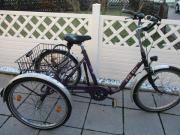 Erwachsenen Dreirad, Fahrrad
