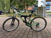 Fahrrad Mountainbike McKenzie