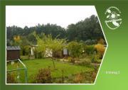 Freier Garten - Irisweg