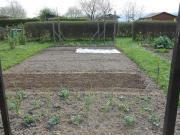Garten in Gartenanlage