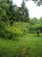 Garten zur Pachten