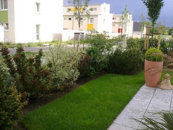 Pflanzen b ume str ucher pflanzen garten n rnberg for Garten q gebraucht