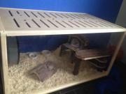 großer Hamster Käfig