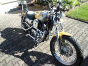 Harley Sortster 883,