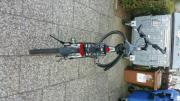 Herren Focus Dreckingrad