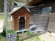 Hundezwinger Zwingerelemente Zaunelemente