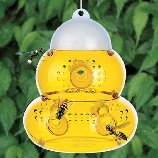 insektenfalle wespenfalle garten fliegenfalle ohne strom bio in dresden campingartikel kaufen. Black Bedroom Furniture Sets. Home Design Ideas