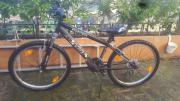 Jungen Fahrrad 24