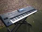 Keyboard,Arranger,Workstation