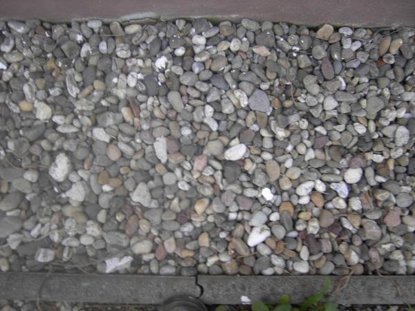 Kiselsteine zu verschenken min 1cbm in neuhofen biete for Fenster zu verschenken
