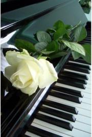 Klavierunterricht in Hildrizhausen
