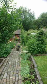 Kleingarten günstig abzugeben
