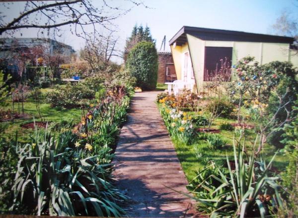 kleingarten in franz sisch buchholz pankow zu verkaufen in berlin schreberg rten. Black Bedroom Furniture Sets. Home Design Ideas