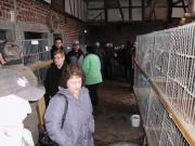 Kleintiermarkt
