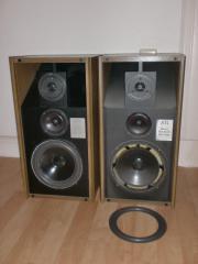 Lautsprecher-Reparatur-Sickenerneuerung,