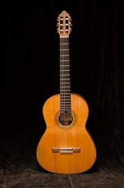 Meistergitarre