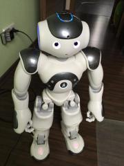 Nao Robot H25