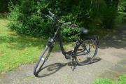 Pegasus city Fahrrad;