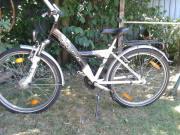 Pegasus Kinderrad, 24