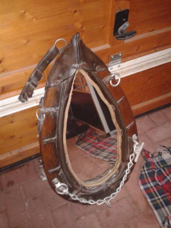 pferdekummet neu und gebraucht kaufen bei. Black Bedroom Furniture Sets. Home Design Ideas