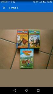 Pferdequiz, Pferdebuch, Quiz,