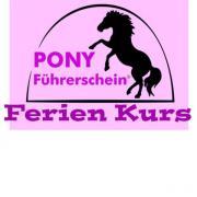 Ponyführerschein Ferienkurs