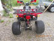 Quad Shinaray 250