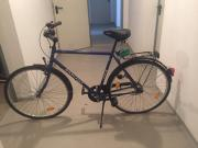 Radiant Fahrrad kt
