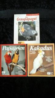 Ratgeber für Papageien .