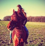 Reitbeteiligung (Pferd) im