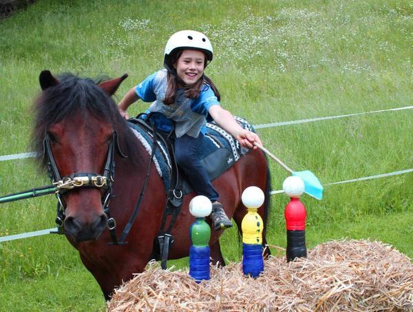 pferde spielen reiten